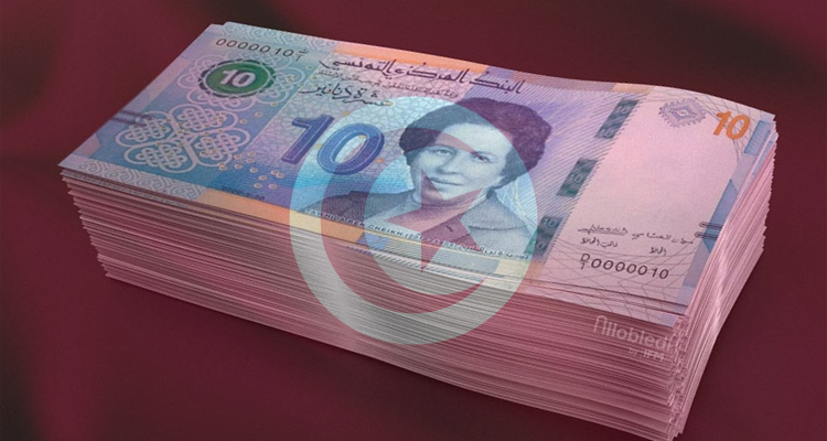 تونس عاشر أغنى الدول العربية من حيث متوسط ثروة كل فرد